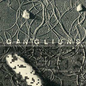 Gaudenz Badrutt - Ganglions LP